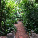 タイ旅行🇹🇭 ジム・トンプソンの家へ行ってみた