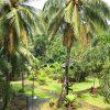 チャーン島のオススメホテル!象がいるビーチ🐘